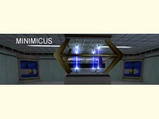 RMFs for MINIMICUS