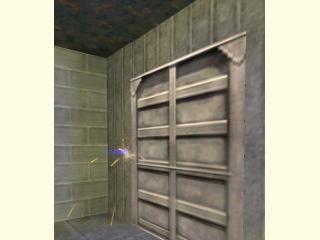 Grunt Bust Door