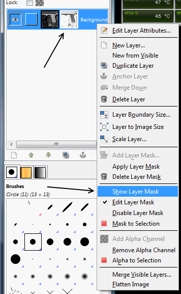 "Select ""Show Layer Mask"". (NOTE: The arrows are for emphasis and will not be seen in the program.)"