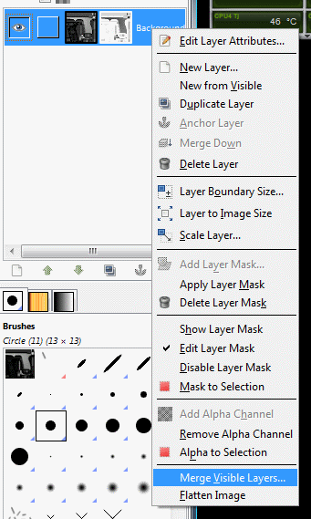"Select ""Merge Visible Layers"" and hit OK."